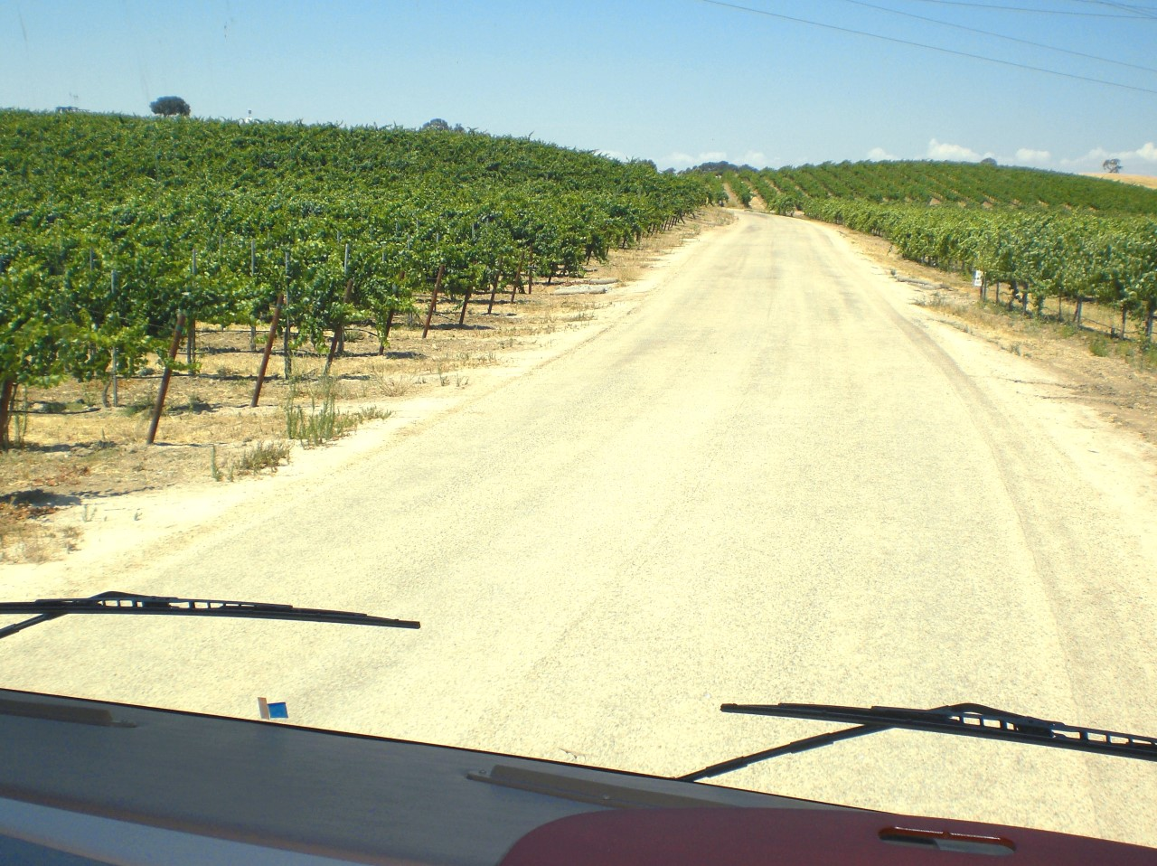 Pear Vally Vineyards driveway