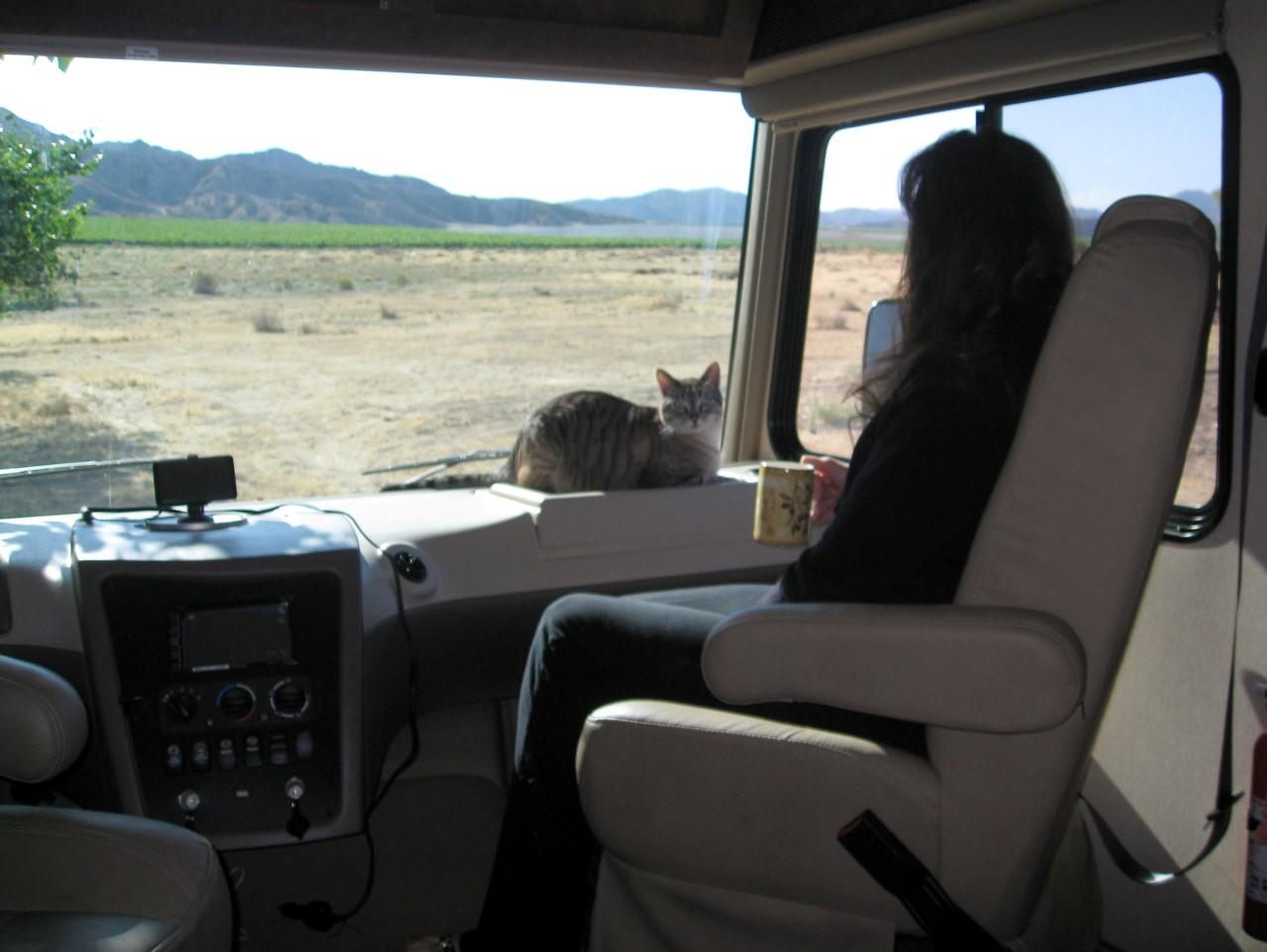 Ann & Cooper enjoying view out RV windshield